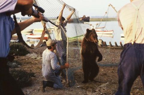 кадр №48842 из фильма Медвежий поцелуй