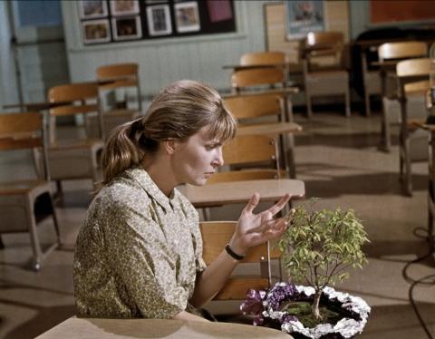кадр №50627 из фильма Рэйчел, Рэйчел