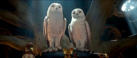 кадр №55580 из фильма Легенды ночных стражей