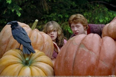 кадр №64328 из фильма Гарри Поттер и узник Азкабана