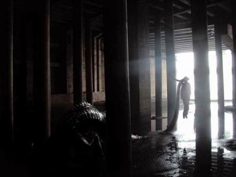 кадры из фильма Вторжение динозавра