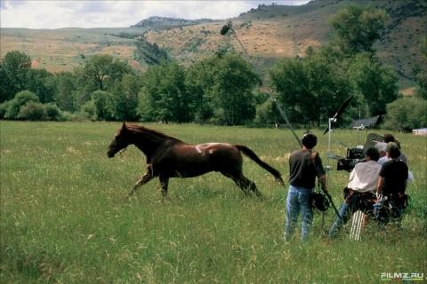 кадр №72052 из фильма Заклинатель лошадей