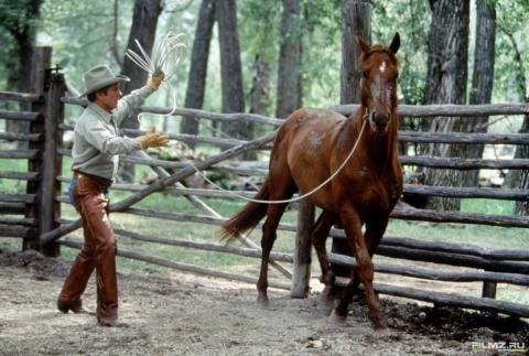кадр №72058 из фильма Заклинатель лошадей