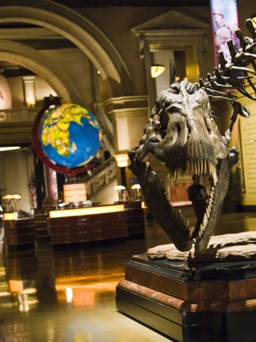 кадры из фильма Ночь в музее