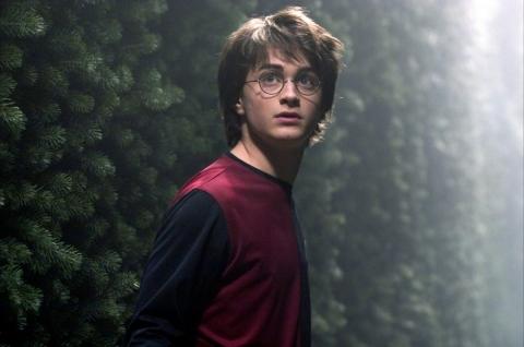 кадр №75443 из фильма Гарри Поттер и Кубок Огня