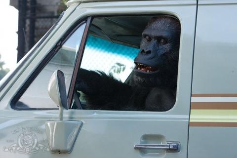 кадр №76893 из фильма Мой парень из зоопарка