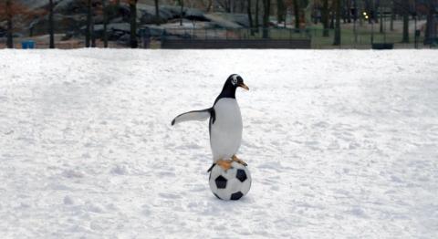 кадр №78299 из фильма Пингвины мистера Поппера