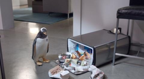 кадр №78300 из фильма Пингвины мистера Поппера