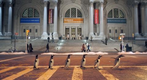 кадр №78302 из фильма Пингвины мистера Поппера