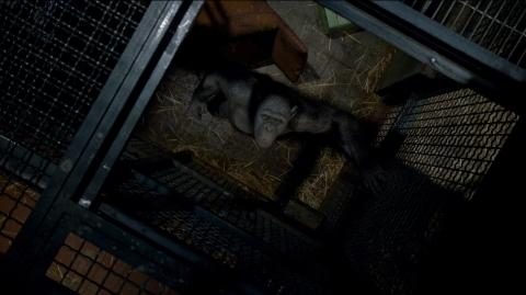 кадры из фильма Восстание планеты обезьян