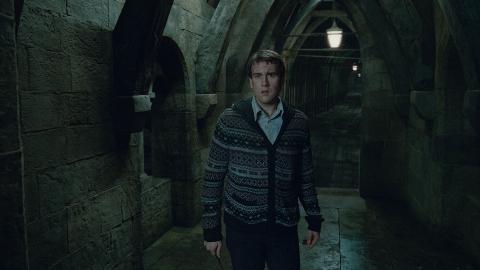 кадры из фильма Гарри Поттер и Дары Смерти: Часть вторая Мэттью Льюис,
