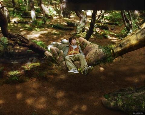 кадры из фильма Мост в Терабитию