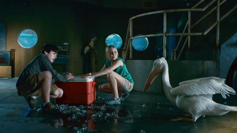 кадр №89538 из фильма История дельфина