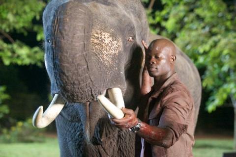 кадр №94693 из фильма Белый слон*