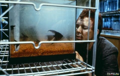 кадр №96137 из фильма Бойцовая рыбка