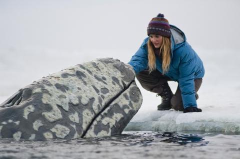 кадр №96728 из фильма Все любят китов