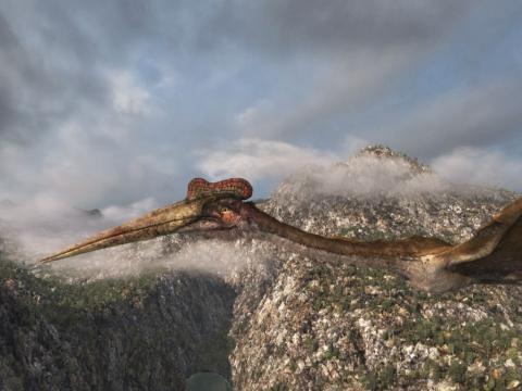 кадр №98349 из фильма Крылатые монстры 3D