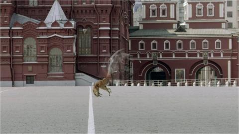 кадры из фильма Фантом