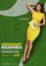 фильм Необходимая жестокость Necessary Roughness 2011-