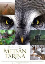 фильм Чудесный лес Metsän tarina 2012