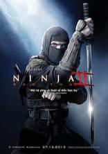 фильм Ниндзя: Тень страха* Ninja: Shadow of a Tear 2013