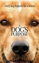 ����� ������� ����� Dog's Purpose, A 2017