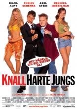 фильм Новые муравьи в штанах Knallharte Jungs 2002
