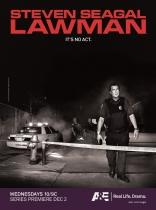 фильм Стивен Сигал в законе* Steven Seagal: Lawman 2009-