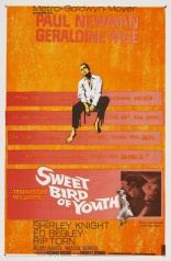 фильм Сладкоголосая птица юности Sweet Bird of Youth 1962