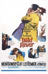 фильм Дикая река Wild River 1960