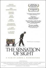 фильм Ощущение видения* Sensation of Sight , The 2006