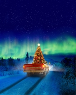 Домой на Рождество плакаты