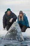 кадр №107282 из фильма Все любят китов