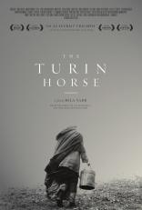 Туринская лошадь плакаты