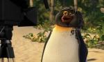 кадр №11523 из фильма Лови волну!