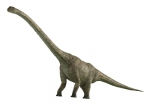 кадр №121356 из фильма Тарбозавр 3D