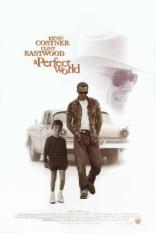фильм Совершенный мир