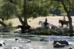 кадр №1254 из фильма Бандитки
