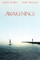 Пробуждение плакаты