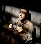 13619:Стив МакКуин (I)
