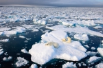 Арктика 3D кадры