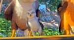 кадр №130403 из фильма Замбезия