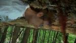 кадр №132255 из фильма З/Л/О