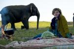 кадр №135228 из фильма Слон
