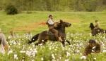 кадр №139045 из фильма Джанго освобожденный