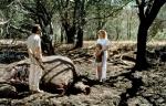 кадр №143155 из фильма Я мечтала об Африке