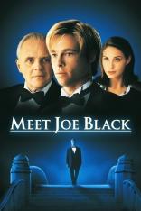 Знакомьтесь, Джо Блэк плакаты
