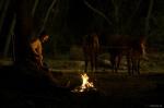кадр №14783 из фильма Нефть