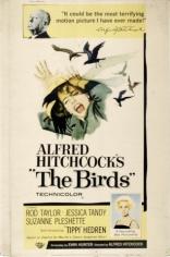 Птицы плакаты