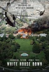 Штурм Белого дома плакаты
